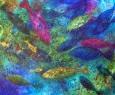 voda-_-2017-olej-50x60-cm-prodano