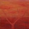 Osamělý strom / 2007 olej 33 x 33 cm - prodáno