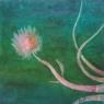 Aspergil / 2008 olej 50 x 50 cm - prodejné