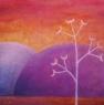 Miřík stříbřitý / 2009 olej 60 x 60 cm - prodejné
