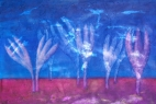 Ocúny 1 / 2008 olej 40 x 60 cm - prodejné