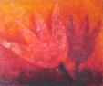 TulipManus královský / 2009 olej 50 x 60 cm - prodejné
